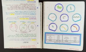 1 1 e1467486005927 300x181 - Making Editable Notes Work for You and Your Students
