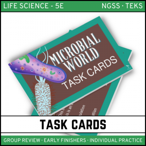 14 1 300x300 - The Microbial World - Life Science Task Cards
