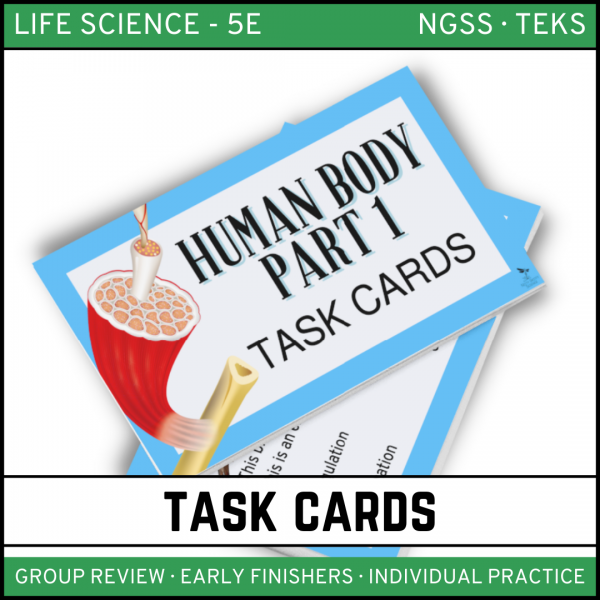 15 1 600x600 - Human Body: Part 1 - Life Science Task Cards