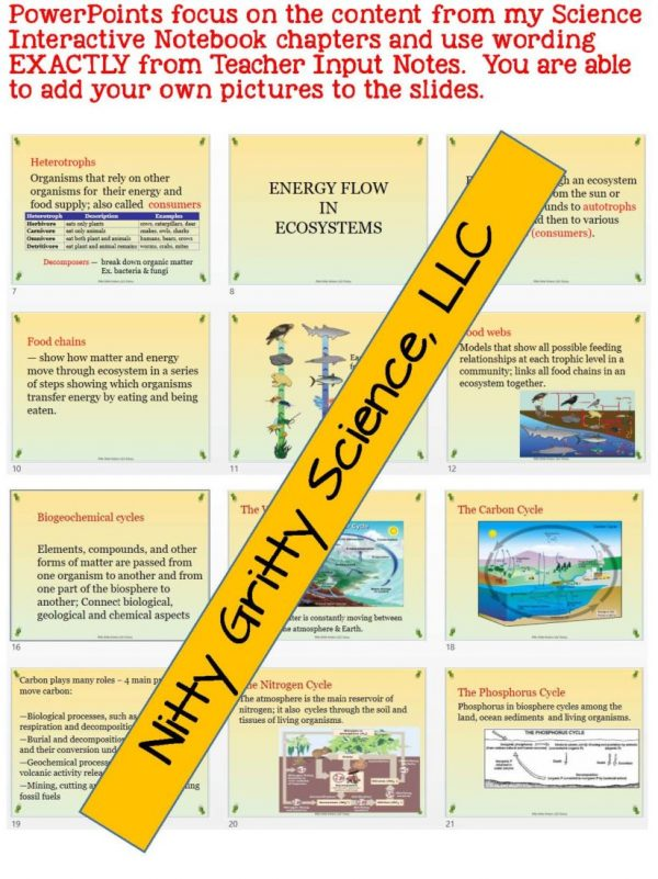 2302341 Page 5 600x801 - Principles of Ecology: Life Science PowerPoint, Notes and Test ~ EDITABLE!