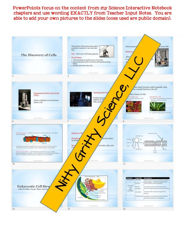 2346947 Page 5 600x776 - Cell Structure and Function: Life Science Notes, PowerPoint and Test ~ EDITABLE!