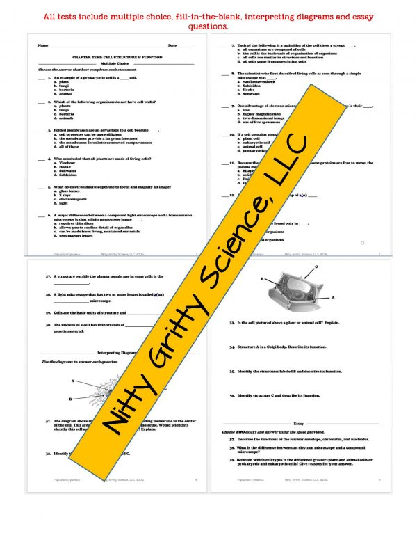 2346947 Page 6 600x776 - Cell Structure and Function: Life Science Notes, PowerPoint and Test ~ EDITABLE!