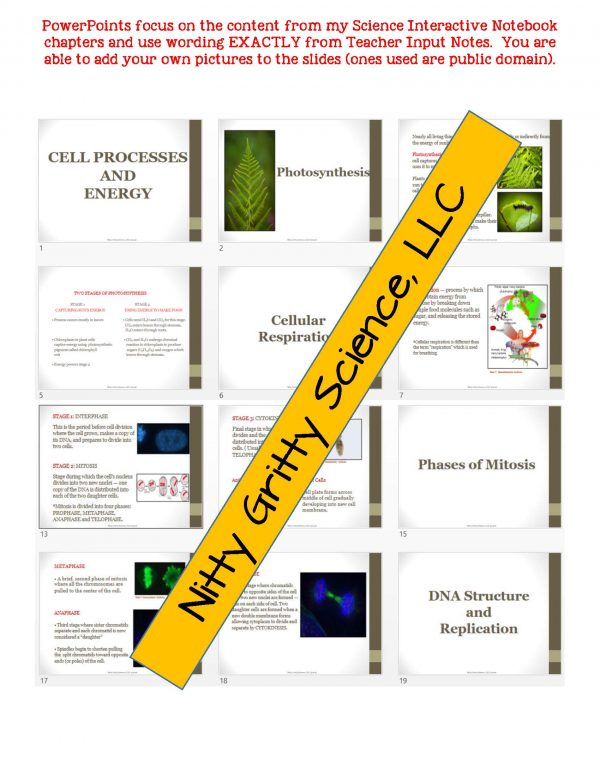 2348848 Page 5 600x776 - Cell Processes and Energy Life Science Notes, PowerPoint & Test~ EDITABLE