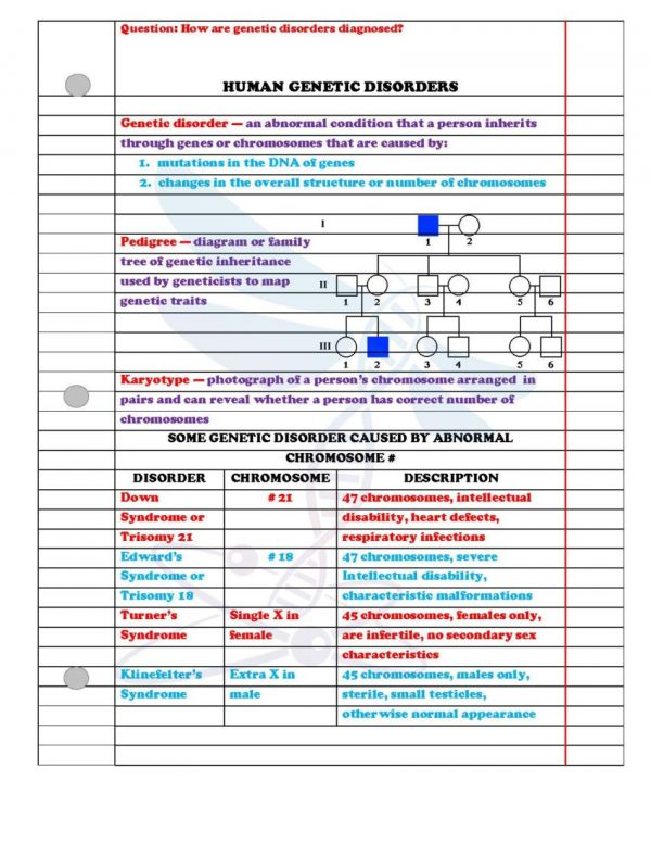 2354801 Page 3 600x776 - Modern Genetics: Life Science Notes, PowerPoint and Test ~ EDITABLE