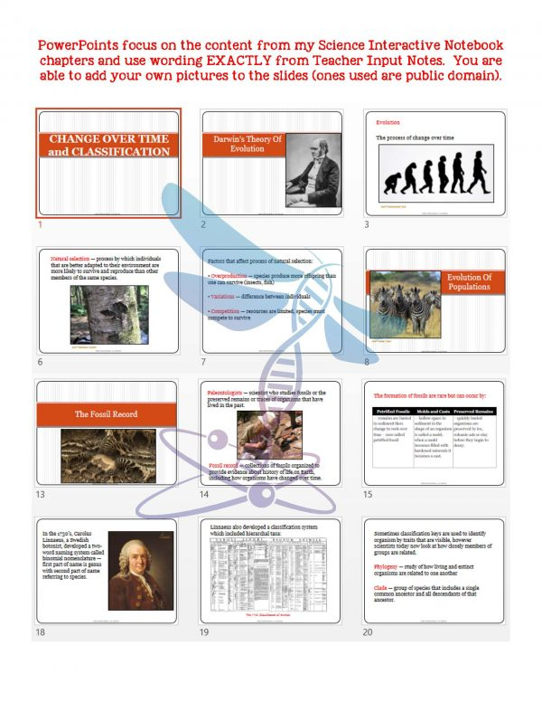 2369898 Page 5 600x776 - Change Over Time & Classification: Life Science Notes, PowerPoint & Test~EDITABLE