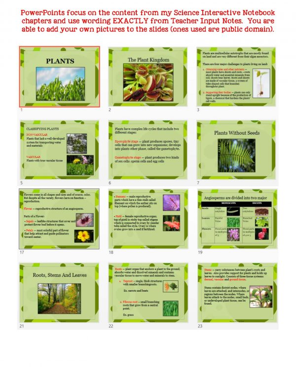 2383425 Page 5 600x776 - Plants: Life Science Notes, PowerPoint & Test ~ EDITABLE
