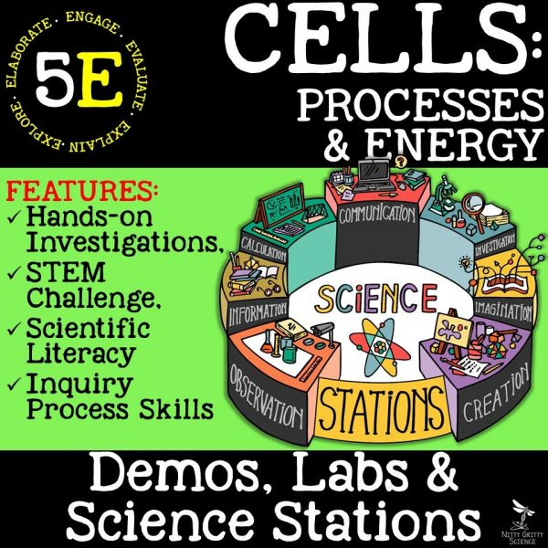 Cell Processes and Energy 600x600 - CELLS: PROCESSES & ENERGY - Demos, Labs and Science Stations