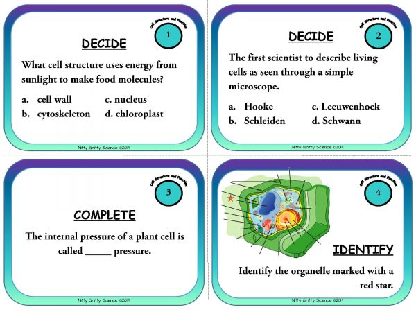 Cell Structure and Function Page 03 Copy 600x450 - Cells: Structure and Function - Life Science Task Cards