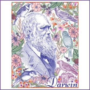 Darwin 300x300 - Shop