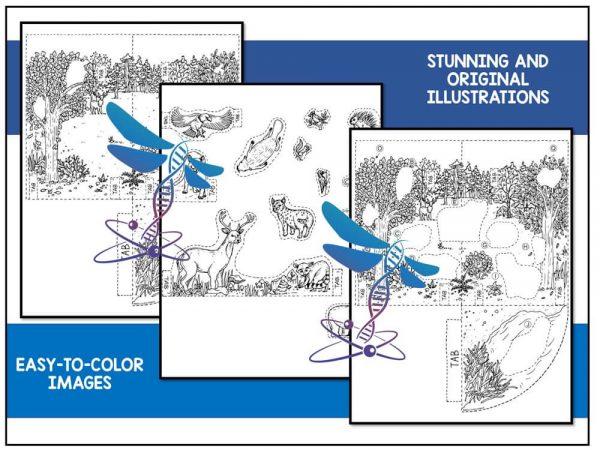 Deciduous Preview 2 600x450 - Deciduous Forest Biome Model - 3D Model - Biome Project