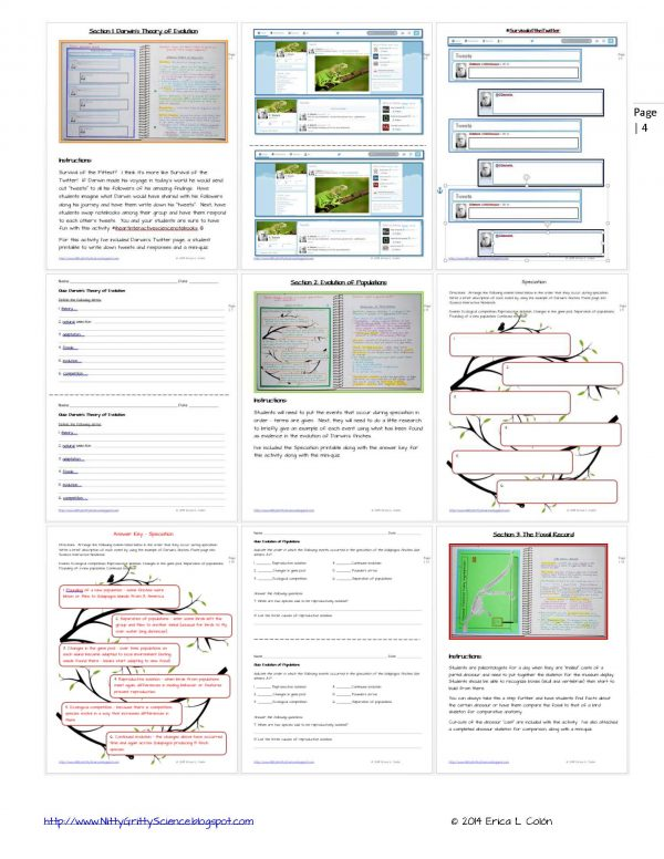Demo CHANGE OVER TIME Page 4 600x776 - Change Over Time & Classification