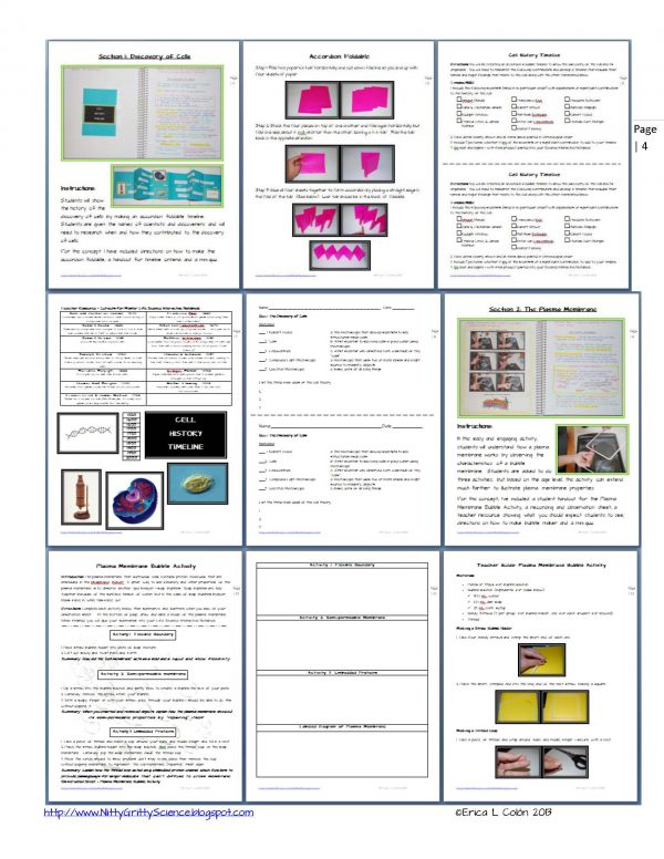 Demo Cell Structure and Function Page 4 1 600x776 - Life Science Interactive Notebook - The Complete Bundle for an Entire Year
