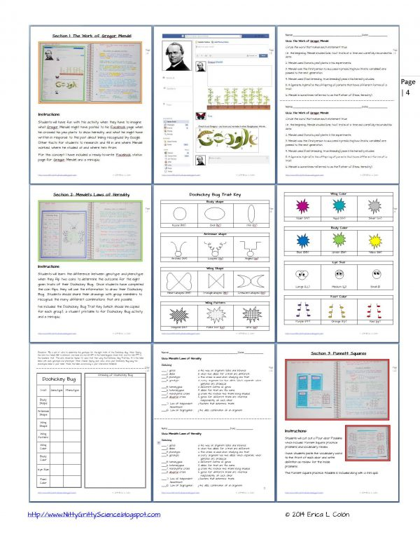 Demo GENETICS The Science of Heredity Page 4 600x776 - Genetics: The Science of Heredity