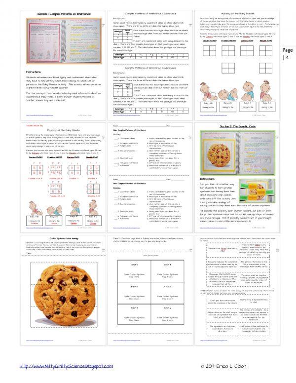 Demo MODERN GENETICS Page 4 600x776 - Modern Genetics