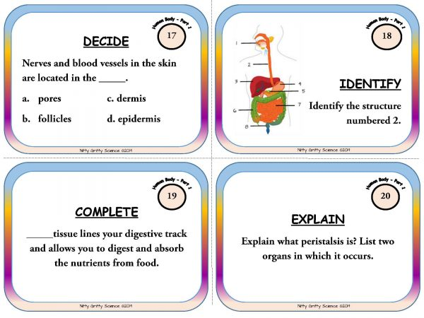 Human Body Part 1 Page 07 600x450 - Human Body: Part 1 - Life Science Task Cards