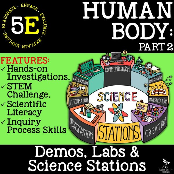 Human Body Part 2 600x600 - HUMAN BODY Part 2 - Demos, Labs and Science Stations