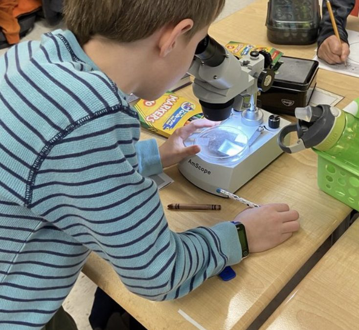 Using Microscopes (or Budget-Friendly Alternatives) to Teach Science in Elementary Classrooms