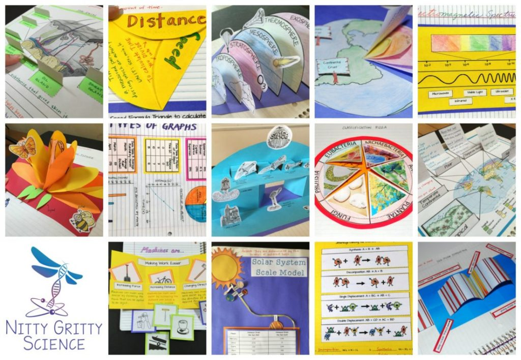 """INB collage 1024x708 - Successfully putting the """"Interactive"""" in Science Interactive Notebooks"""