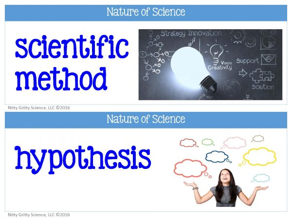Nature of Science FREE word wall set.pdf Page 1 600x450 - Nature of Science - Word Wall FREEBIE