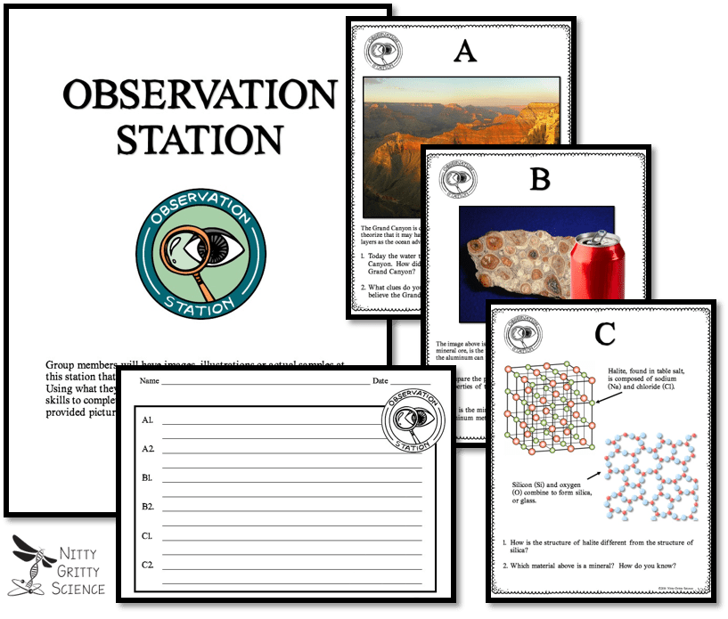 Observation - Implementing Successful Science Stations for ALL Learners