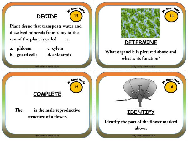 Plants Page 06 600x450 - Plants - Life Science Task Cards