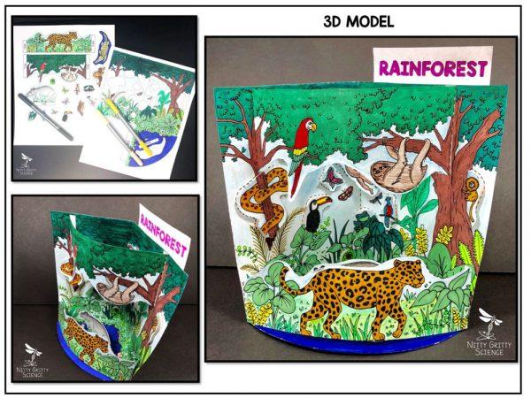 Rainforest Preview 1 600x450 - Rainforest Biome Model - 3D Model - Biome Project