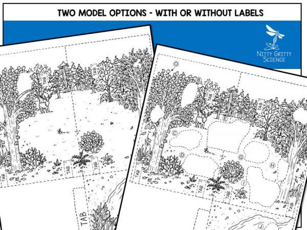 Rainforest Preview 4 600x450 - Rainforest Biome Model - 3D Model - Biome Project