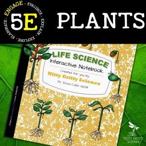 Slide2 1 300x300 - Plants