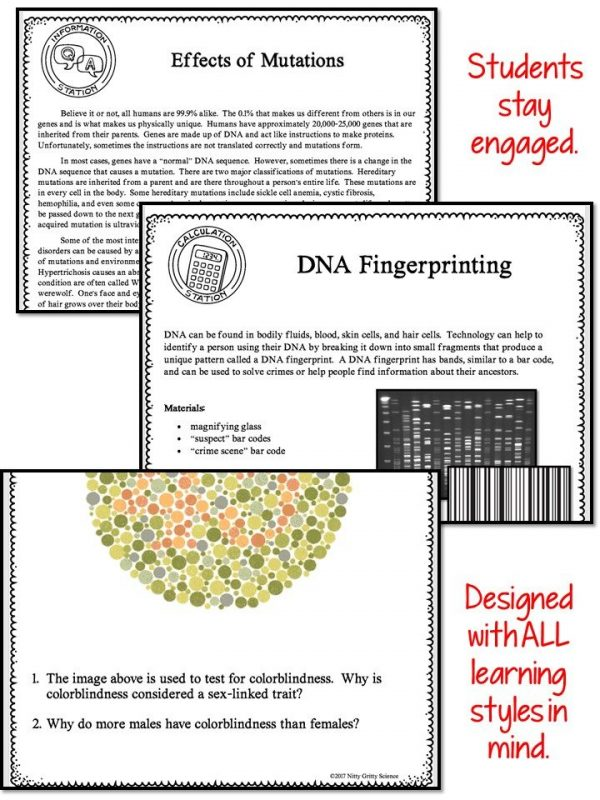 Slide4 1 2 600x800 - MODERN GENETICS - Demos, Labs and Science Stations