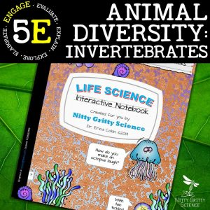 Slide9 1 300x300 - Animal Diversity – Invertebrates