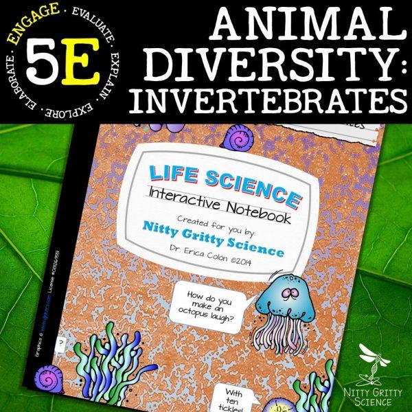 Slide9 1 600x600 - Animal Diversity – Invertebrates