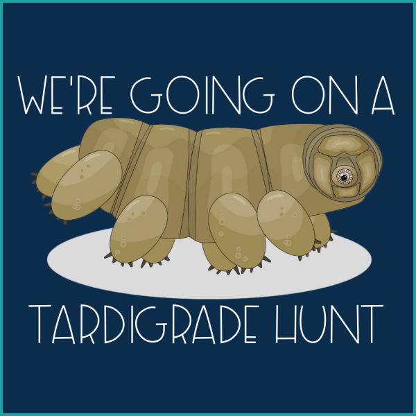 Tardigrade Hunt 1 600x600 - Going on a Tardigrade Hunt