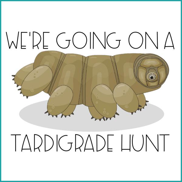 Tardigrade Hunt 600x600 - Going on a Tardigrade Hunt