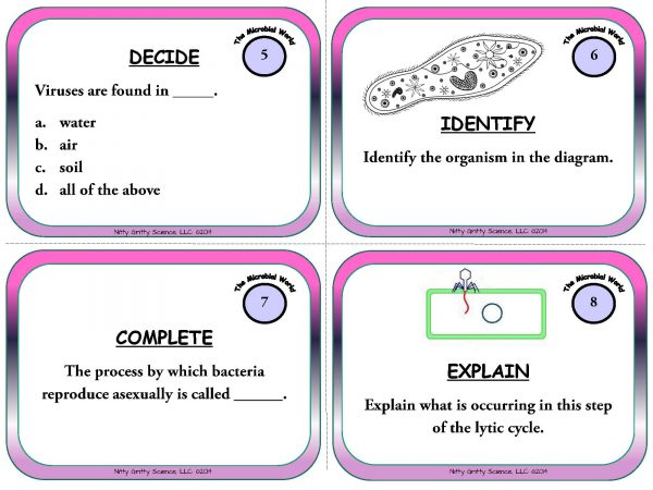 The Microbial World Page 04 600x450 - The Microbial World - Life Science Task Cards