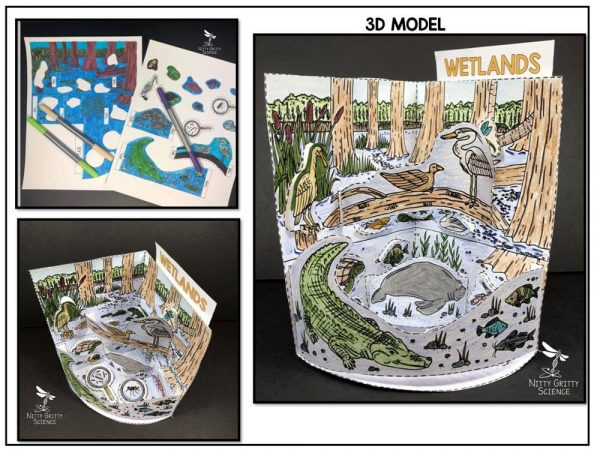 Wetlands Preview 1 600x450 - Wetland Biome Model - 3D Model - Biome Project