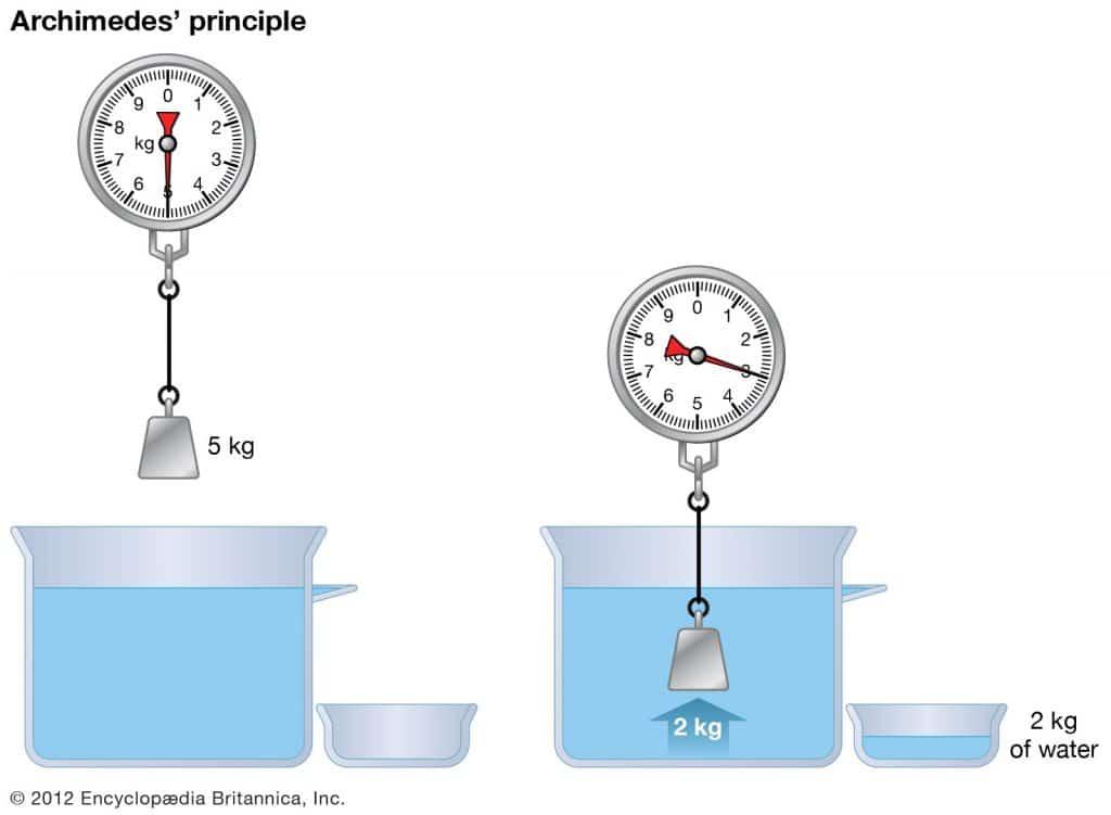 archmides principle 1 1024x751 - Section 6: Fluids: Behaviors of Liquids and Gases