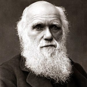 darwin 300x300 - Section 1: Darwin's Theory of Evolution