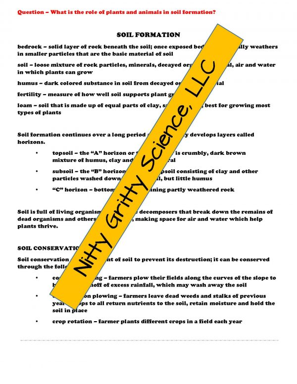 demoEarthSciencePowerPointNotesTestEarthsChangingSurfaceEDITABLE2208008 Page 4 600x776 - Earth's Changing Surface: Earth Science PowerPoint, Notes & Test ~ EDITABLE!