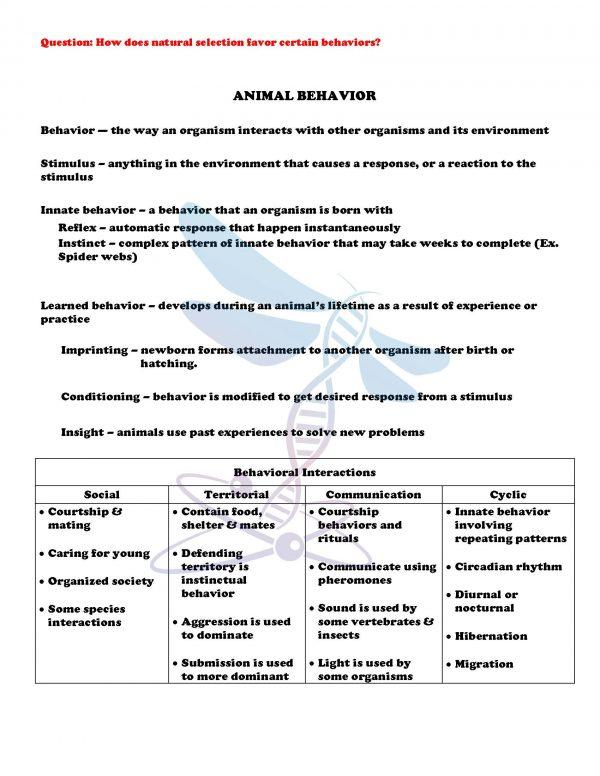 demoLifeScienceNotesPowerPointTestAnimalDiversityInvertebratesEDITABLE2398246 Page 4 600x776 - Animal Diversity: Invertebrates Life Science Notes, PowerPoint & Test~ EDITABLE