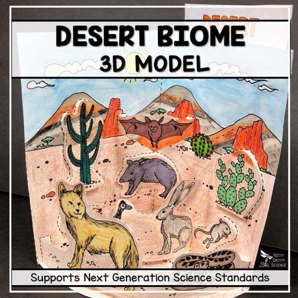 desert biome model 3d model biome project featured image 600x600 - Desert Biome Model - 3D Model - Biome Project