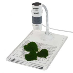 digital microscope 300x300 - Ideas for Bringing the Outdoors Inside for a Science Lesson