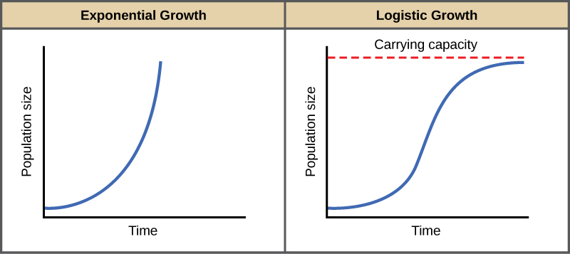 expogrowth - Section 1: Characteristics of Populations