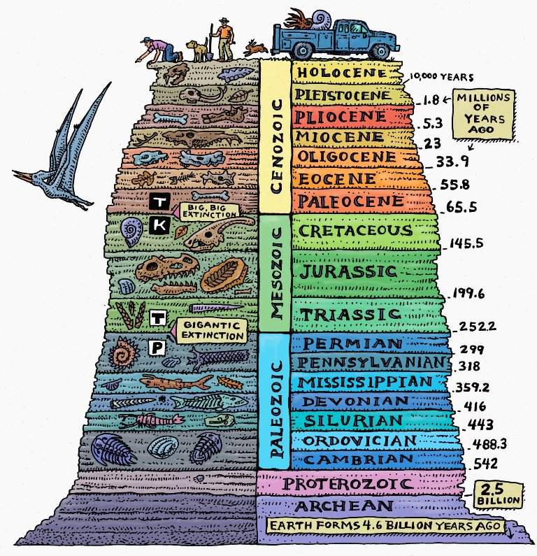 geotimescale - Section 3: The Fossil Record