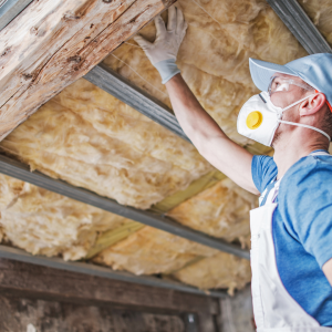 insulation 300x300 - Section 2: Transferring Thermal Energy