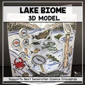 lake biome model 3d model biome project featured image 300x300 - Lake Biome Model - 3D Model - Biome Project