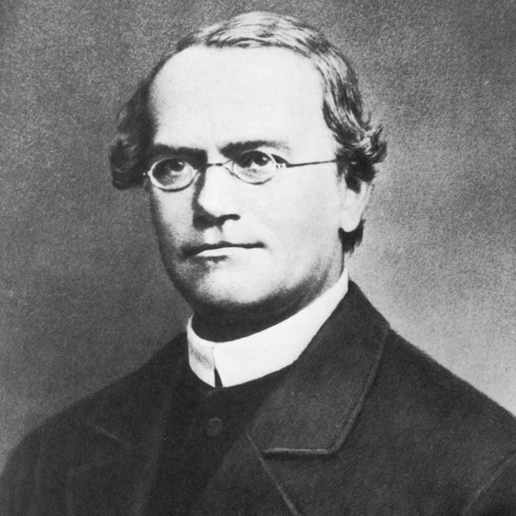mendel 1024x1024 - Section 1: The Work of Gregor Mendel