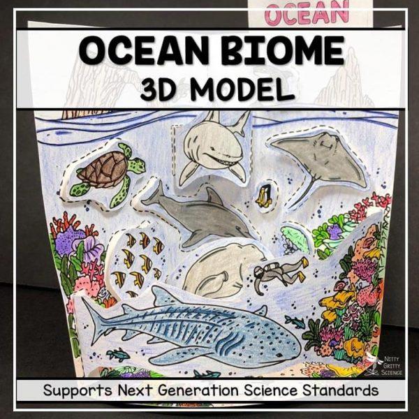 ocean biome model 3d model biome project featured image 600x600 - Ocean Biome Model - 3D Model - Biome Project