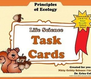 original 1448854 1 300x263 - Task Cards - Principles of Ecology