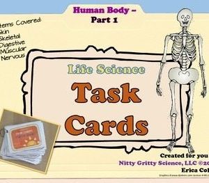 original 1730387 1 300x263 - Human Body: Part 1 - Life Science Task Cards