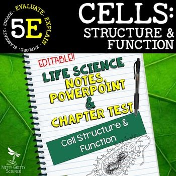 original 2346947 1 - Cell Structure and Function: Life Science Notes, PowerPoint and Test ~ EDITABLE!